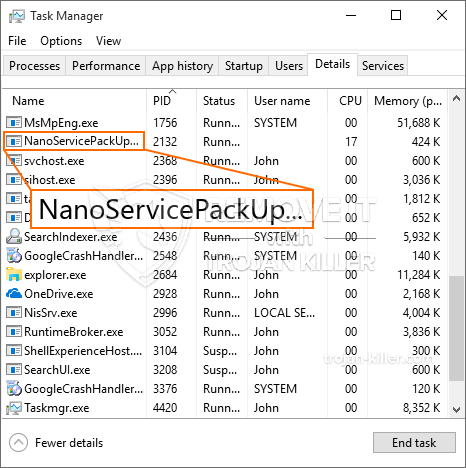 What is NanoServicePackUpdater.exe?