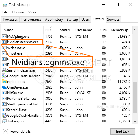 What is NvidianStegnms.exe?