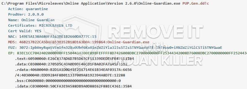 Online-Guardian.exe
