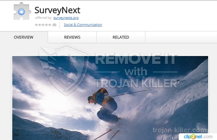 surveynexts.pro