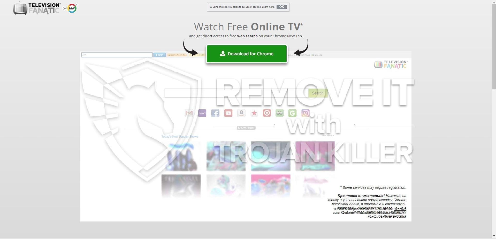 televisionfanatic.com virus