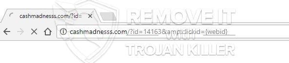 Cashmadnesss.com virus