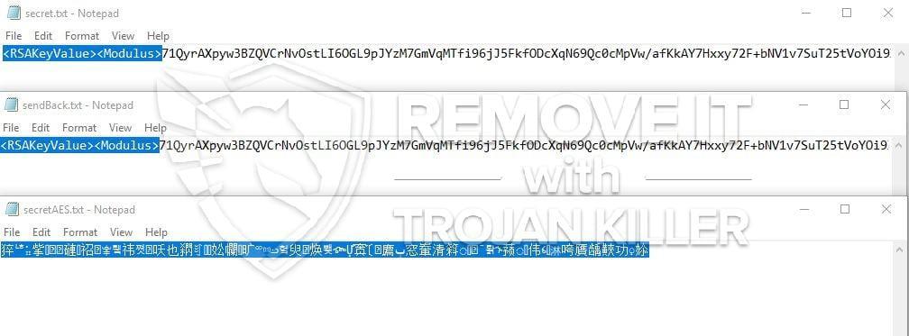 Honor Ransomware virus