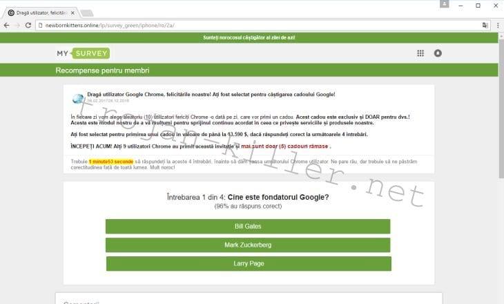 remove Newbornkittens.online
