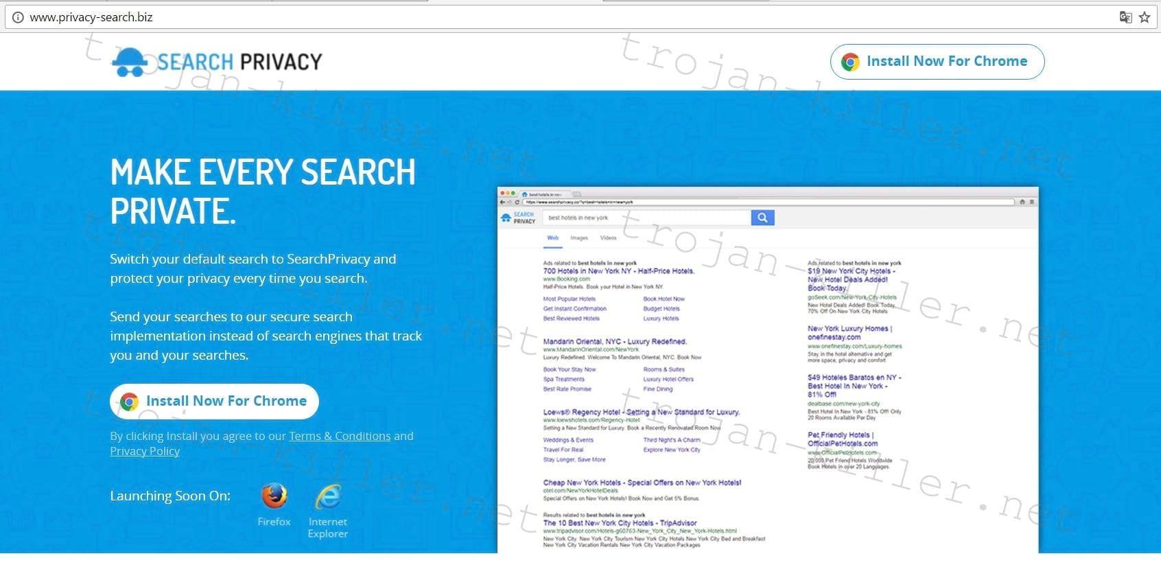Privacy-search.biz