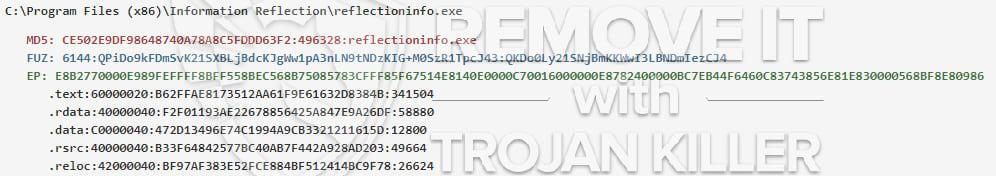 reflectioninfo.exe virus