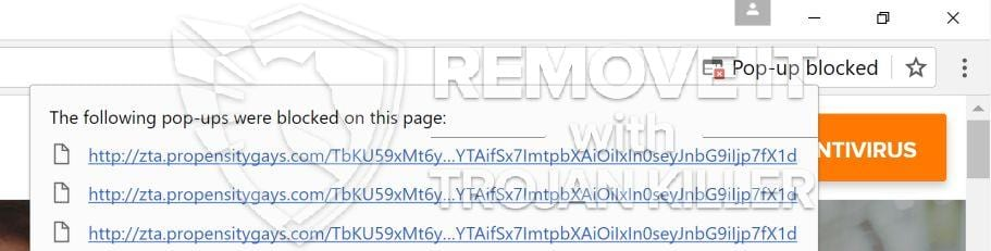Zta.propensitygays.com virus